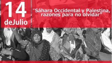 Photo of IU organiza una charla sobre el Sáhara Occidental y Palestina