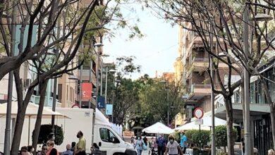 """Photo of """"En este Ayuntamiento las podas las deciden los especialistas, no los políticos"""